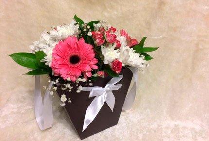 Пять кустовых хризантем в плайм пакете за 450 рублей от салона «Долина роз»