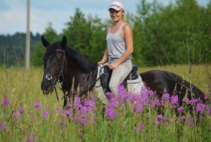 Прогулки на лошадях в любой день по Сосновому бору со скидкой 50%