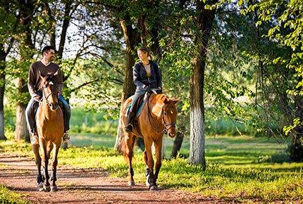 Катание на лошадях со скидкой 50% от конно-спортивного клуба «Феникс»