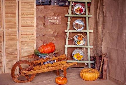 Детский фотопроект «Фермер» в студии «Колибри» со скидкой 50%
