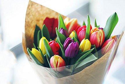 15 тюльпанов за 675 рублей от салона «Долина роз»