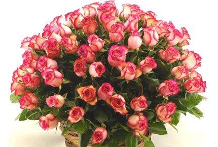 Большой выбор роз со скидкой 50% в цветочном салоне Мари. Подарок к любому празднику!
