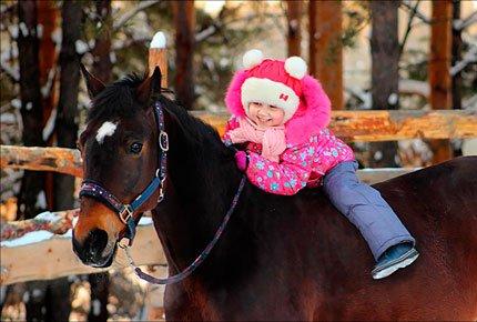 Фотосессия с лошадью со скидкой 50%