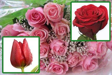 Цветы на 8 марта! Скидка 50% на тюльпаны и розы от цветочного салона Орхидея