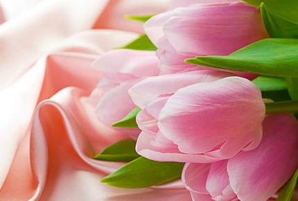 Дарите любимым! Лучший подарок на 8 марта! Тюльпаны со скидкой 50%