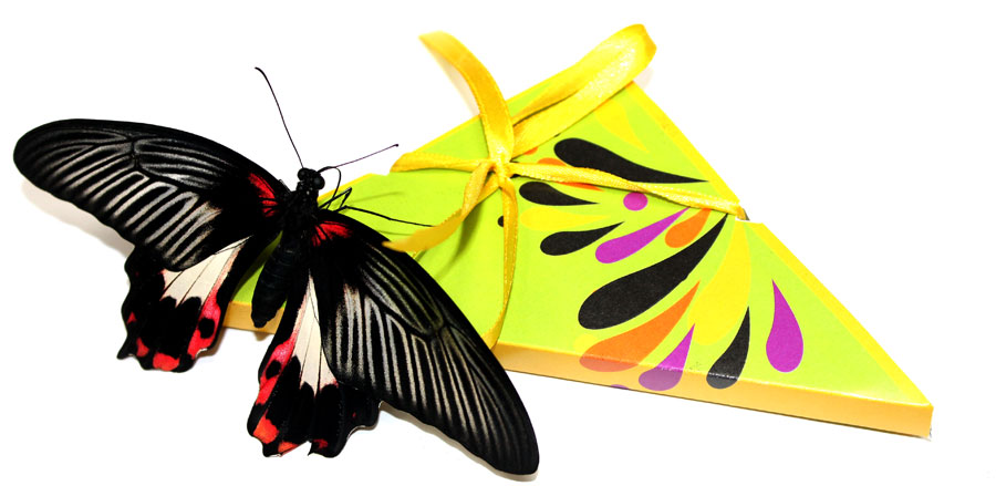 Открытка с бабочкой которая вылетает
