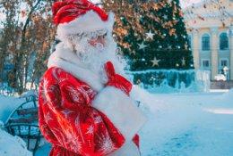 Визит Деда Мороза и Снегурочки  со скидкой 50%